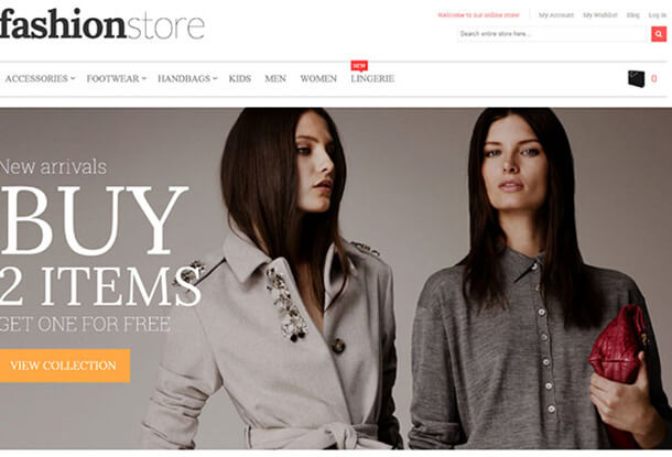 Fashion Store Best Responsive