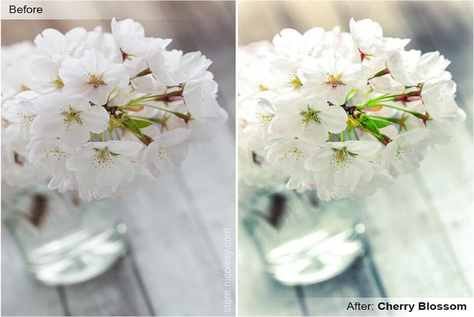 Flower Lightroom Preset