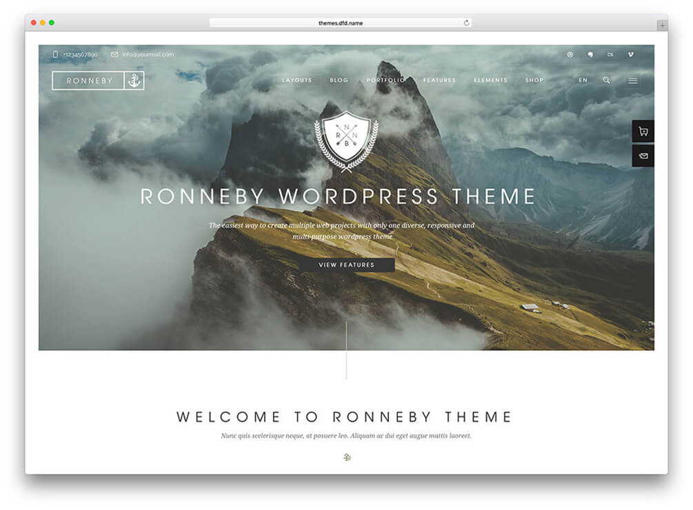 Ronneby Insurance WordPress