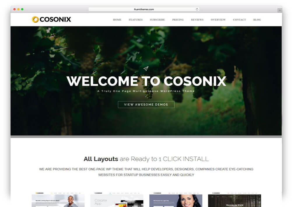 cosonix Responsive One