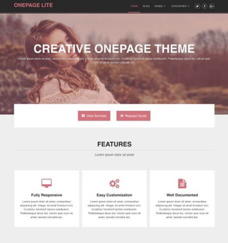 onepage lite WordPress Theme