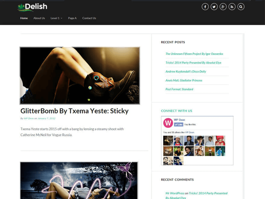 Delish Best Free Photography WordPress Themes 3