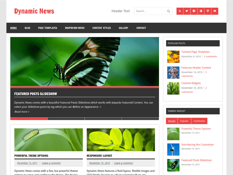 Dynamic News Lite Best Free Responsive Magazine