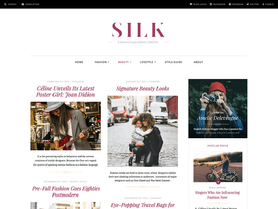 Silk Lite Magazine WordPress Themes 2018