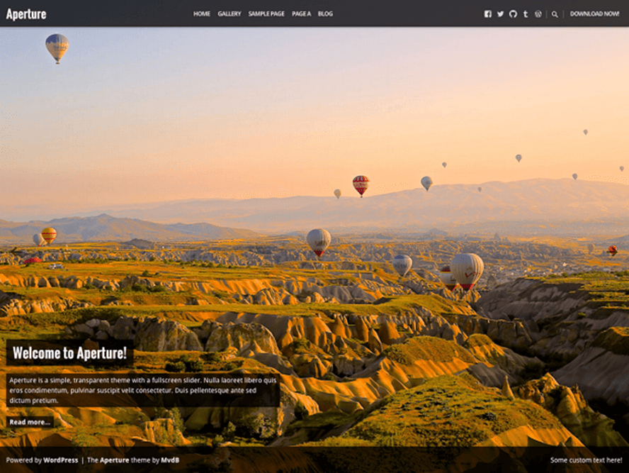 aperture Best Free Photography WordPress Themes 2