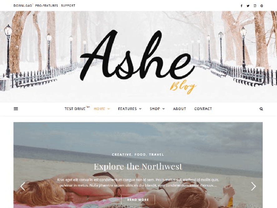 ashe ptheme Best Free Photography WordPress Themes 2