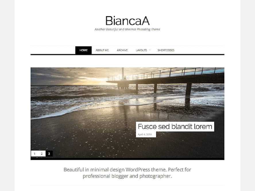 binacaa Best Free Photography WordPress Themes 2