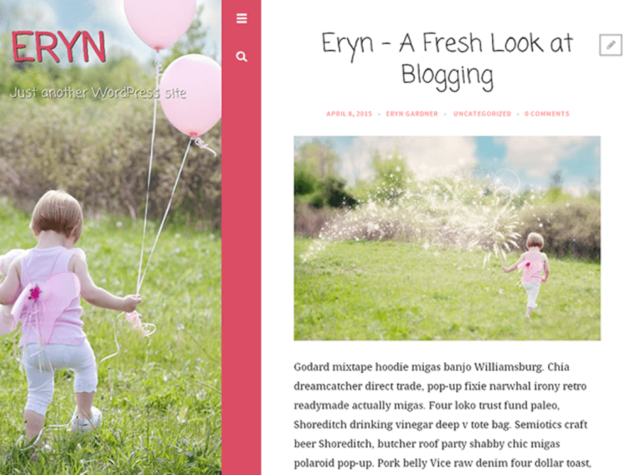 eryn Best Free Photography WordPress Themes 2