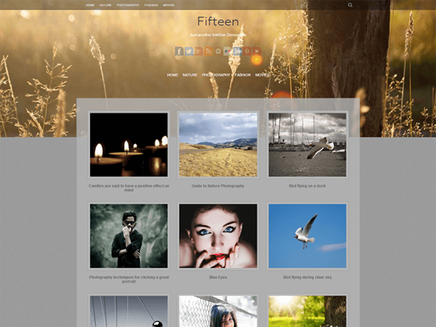 fifteen Best Free Photography WordPress Themes 2