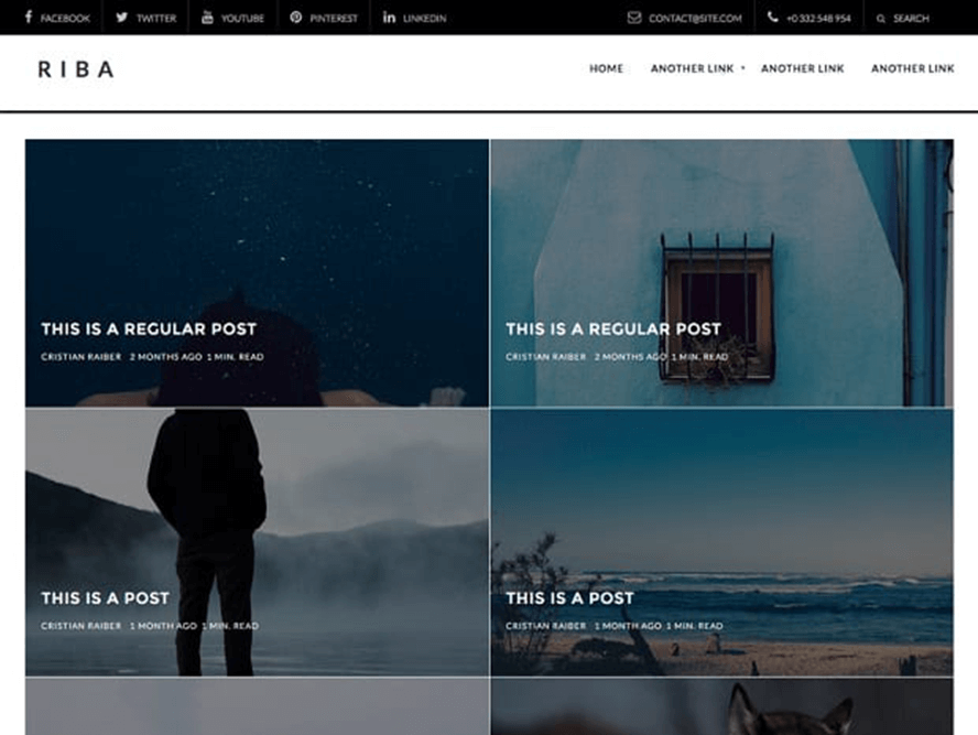 ribalite Free Photography WordPress Themes 2018