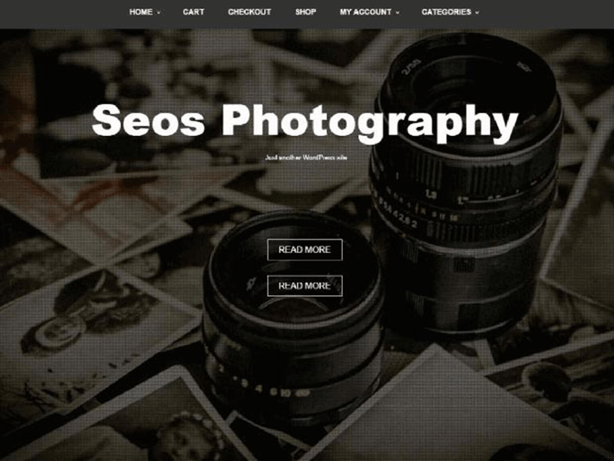 seos photography ptheme Free Photography WordPress Themes 2018