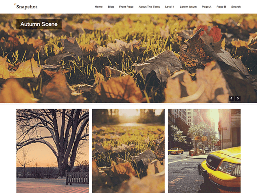 snapshot Free Photography WordPress Themes 2018