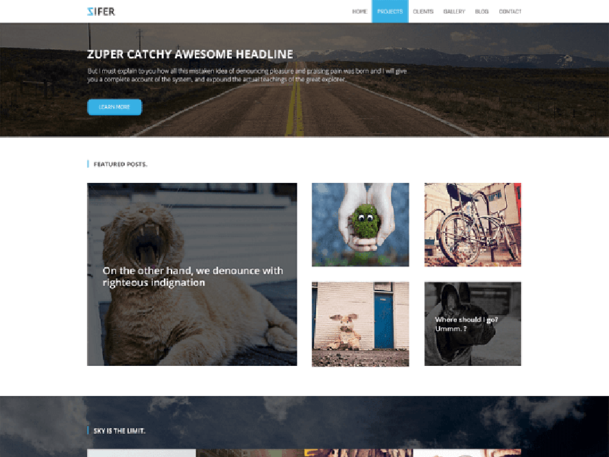ziferchild Free Photography WordPress Themes 2018