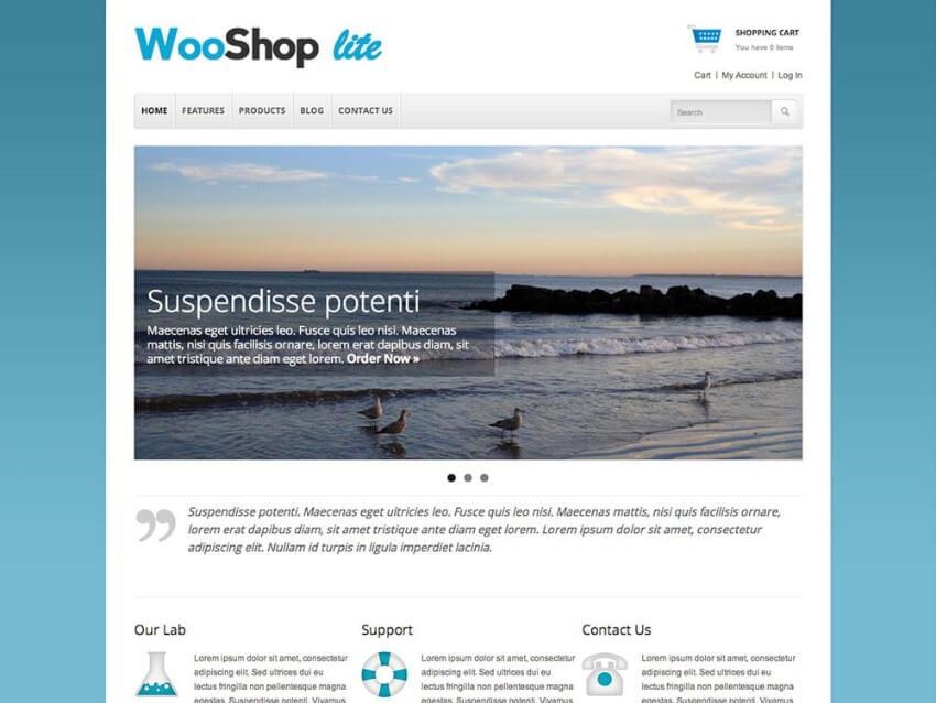 cheap ecommerce wordpress themes 2