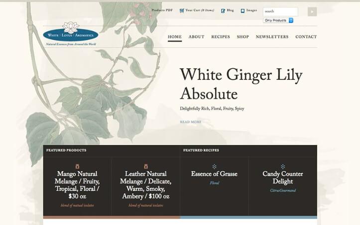 responsive website examples 4