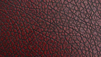 smooth leather texture 1