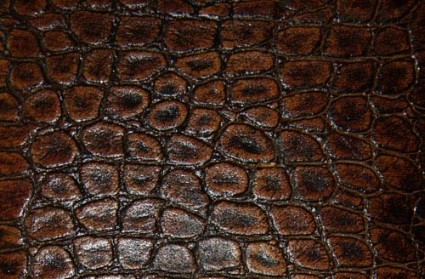 smooth leather texture 2