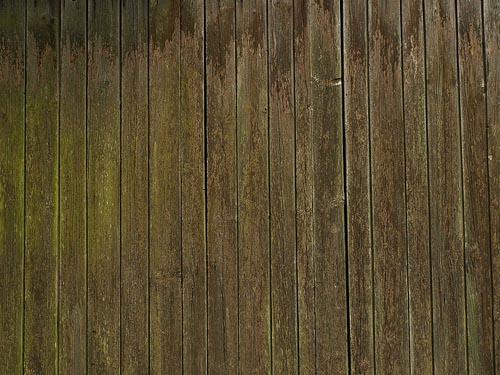 polished wood texture 4