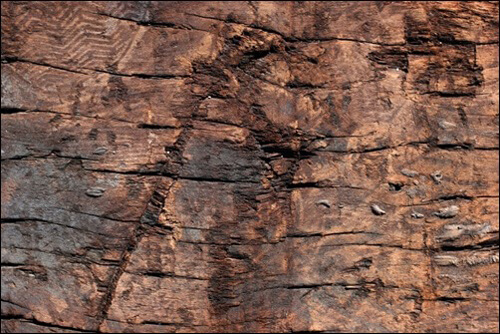 rough wood texture 4 1