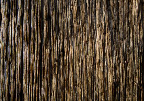 rough wood texture 5 1